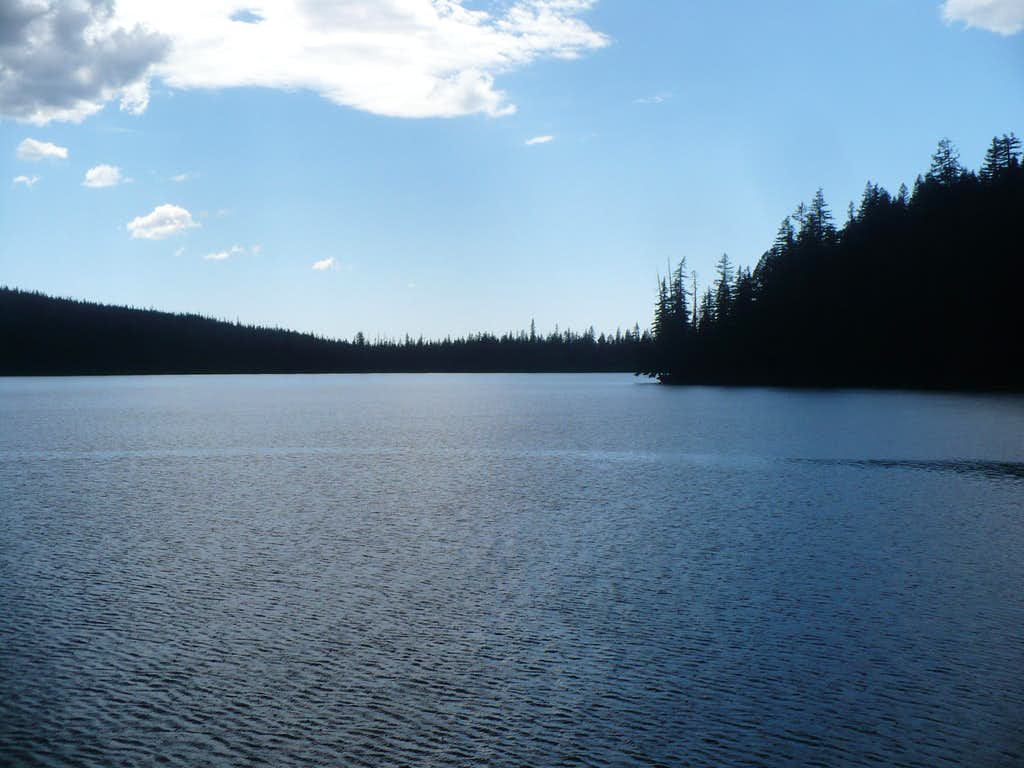 Mink Lake View
