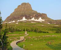 Logan Pass boardwalk trail