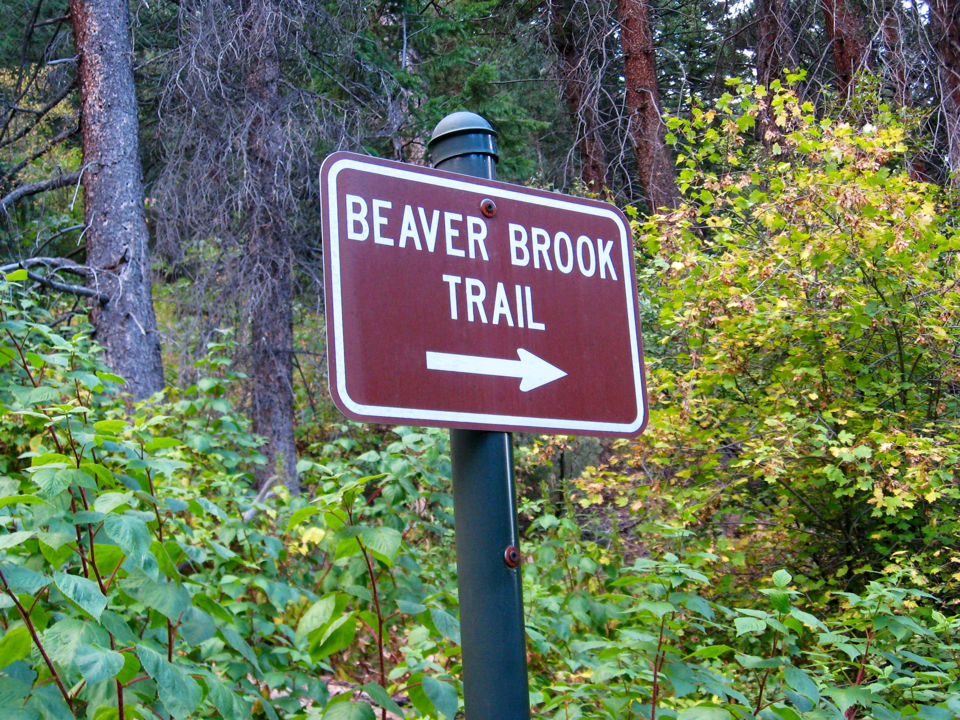 Beaver Brook Trail