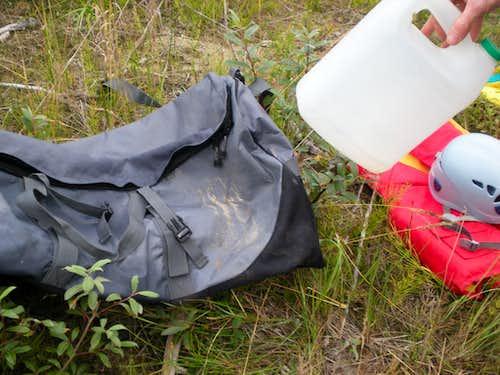 Bear bit through jug