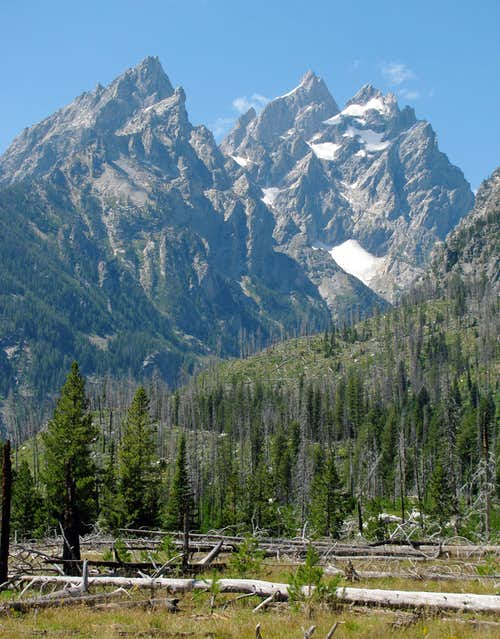 Cathedral Group from Teton Park Road