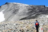 Galdhøpiggen (2469m)