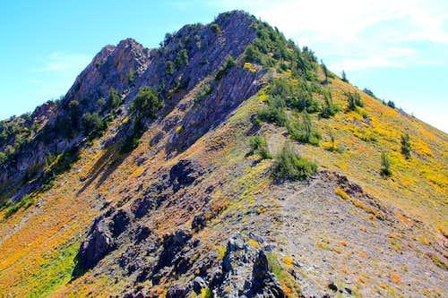 De Moisy Peak.