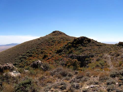 The summit of Maple Peak