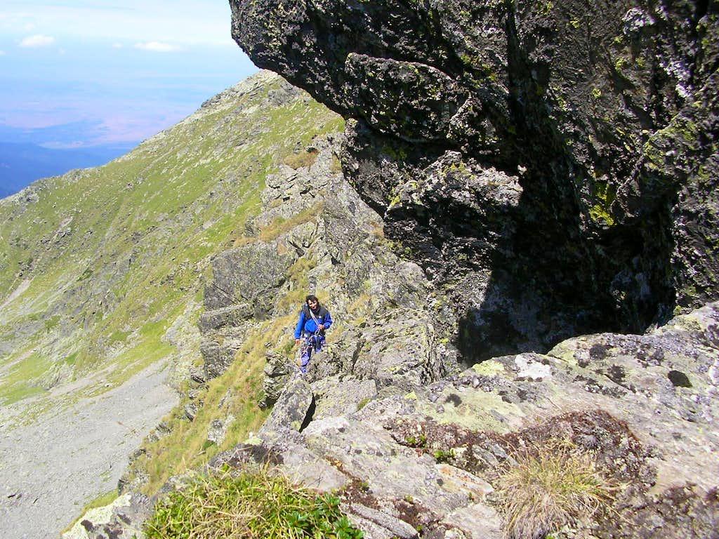 Shepherd Ridge
