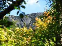Avery Peak In Fall