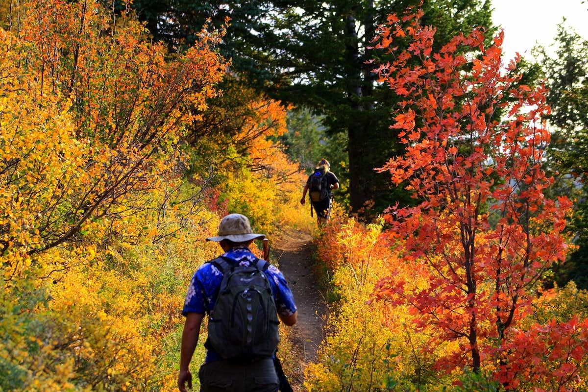 Fun outdoor activities to do in Autumn