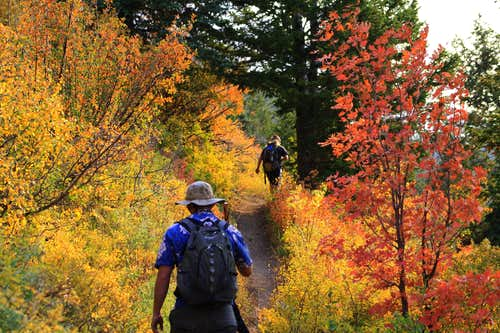 Hiking through the start of Utah\'s Fall Colors