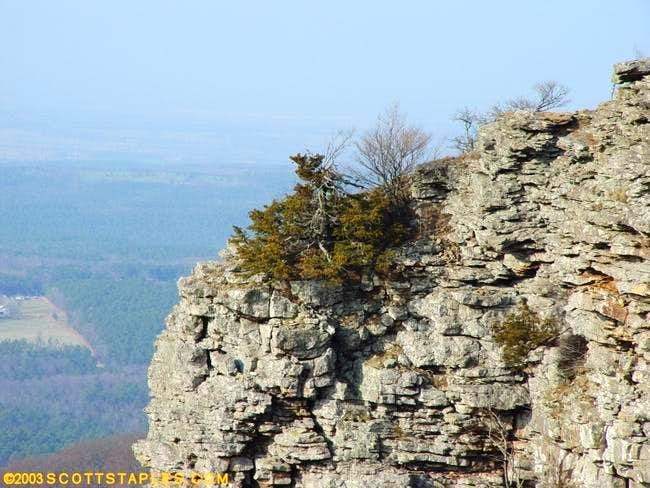 Mount Magazine rock face....