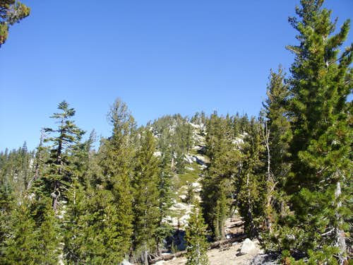 Summit rising from the Tahoe Rim Trail