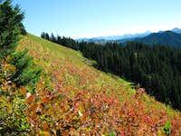 Johnston trail, Scorpion ridge