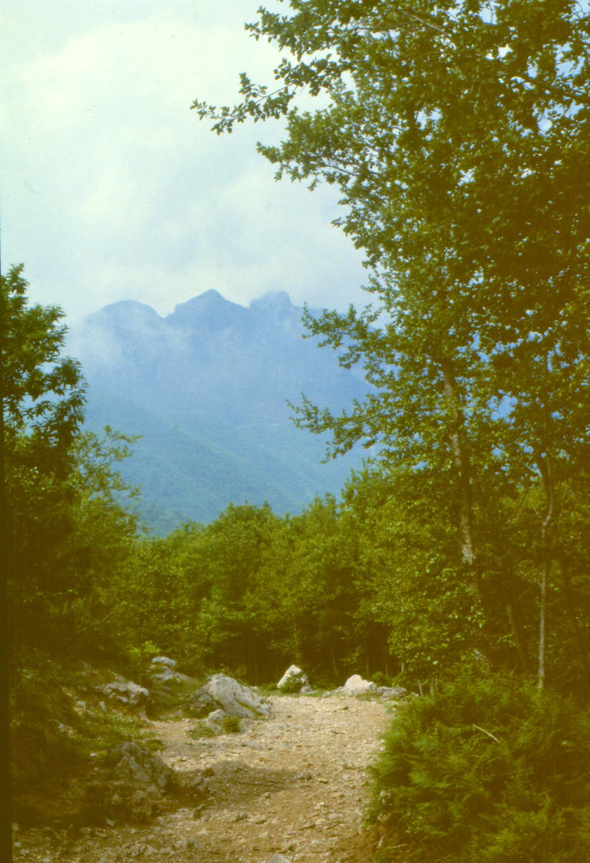 Monte Faito  (3 peaks)