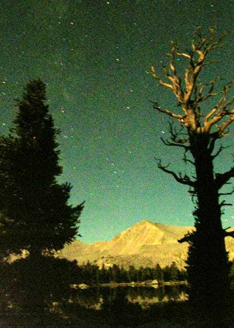 Cirque Peak, moonlit tree, stars