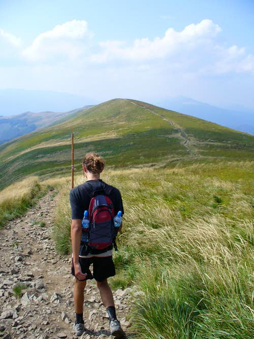 way down from Tarnica