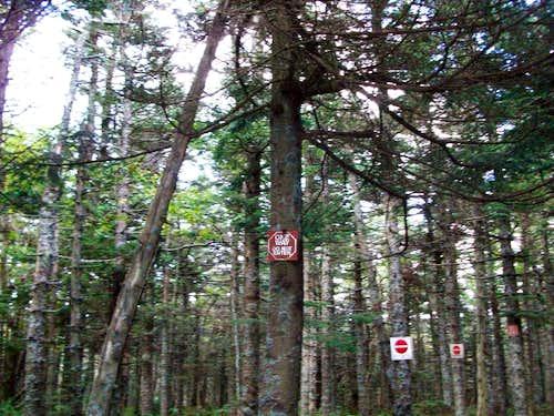 Odd trail signs