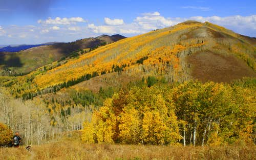 Fall is in full swing in the Wasatch Range