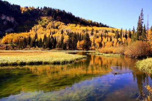Fall colors at Silver Lake