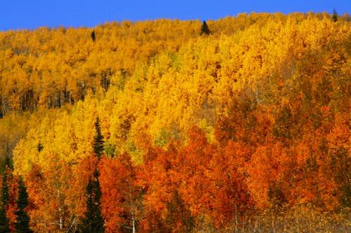 Beautiful Utah 2010 Fall Colors