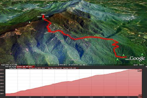 Mt. Mitchell Trail