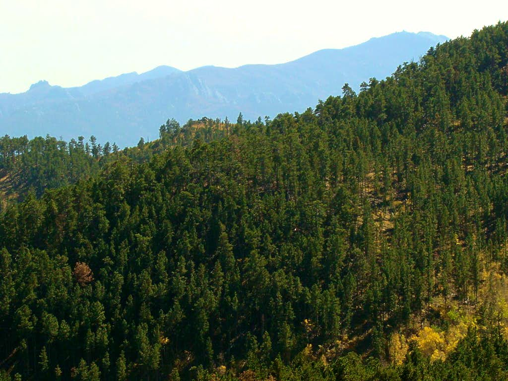 View South to Black Elk Peak