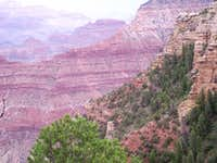 Pink Canyon Walls