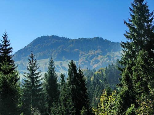 Top of Pieniny - Wysoka