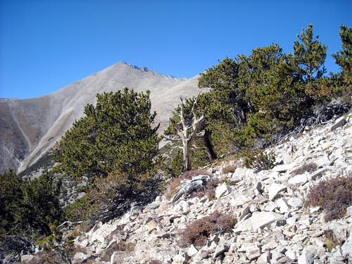 Mt. Antero - East Ridge via Raspberry Gulch