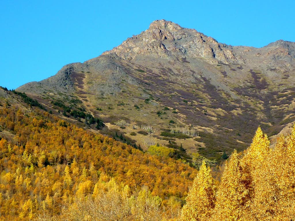 Fall View from Turnagain Arm