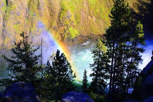 A Canyon of Color in Yellowstone National Park
