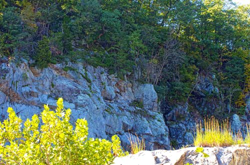 Another View of the Mather Gorge
