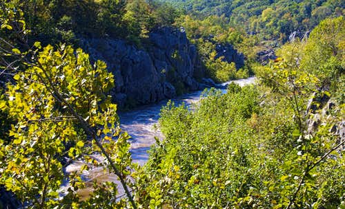 Mather Gorge View