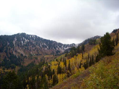 Alexander Basin