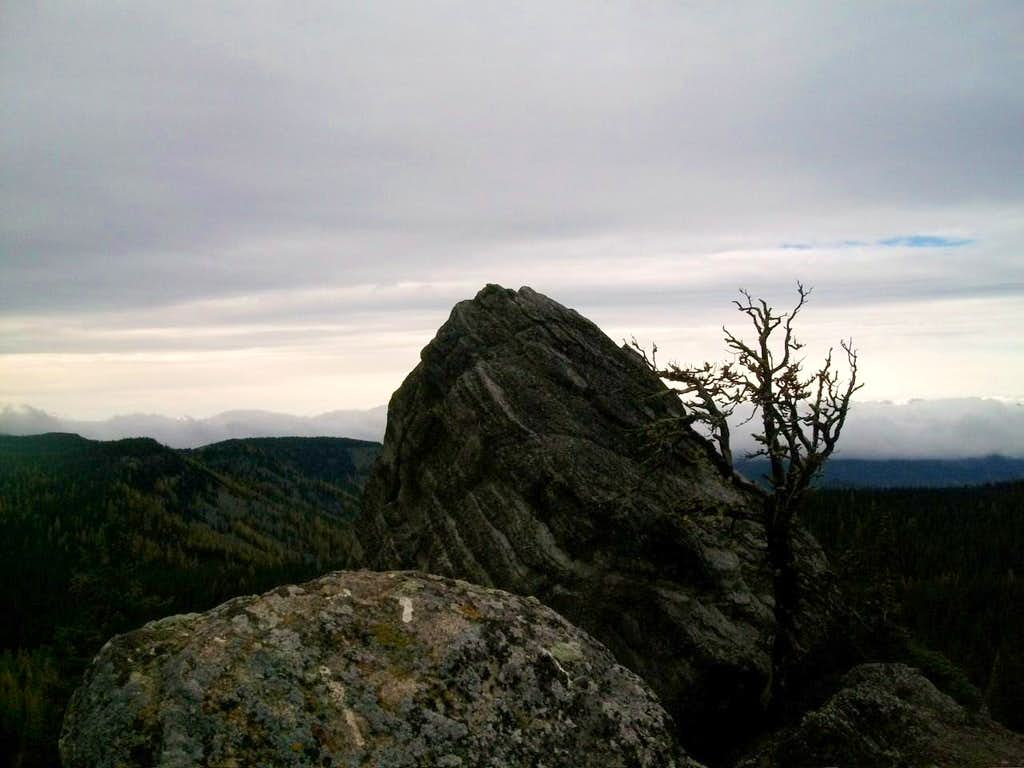 Ledge on Mount Lillian