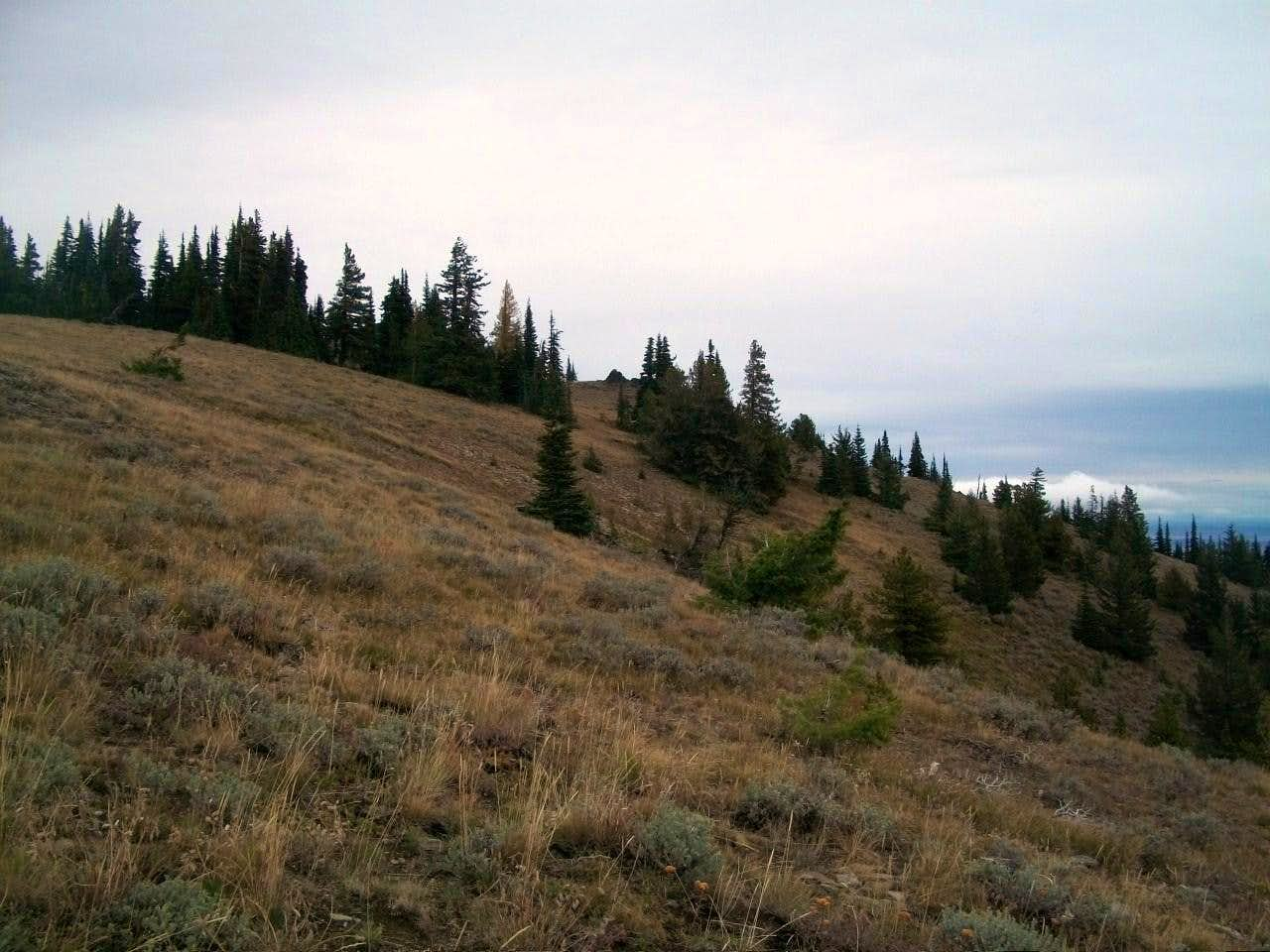 Mount Lillian South