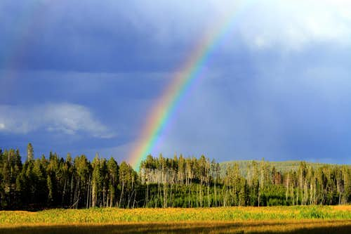 A Yellowstone Rainbow