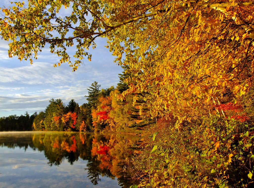 Fall Foliage on Lower Togue Pond