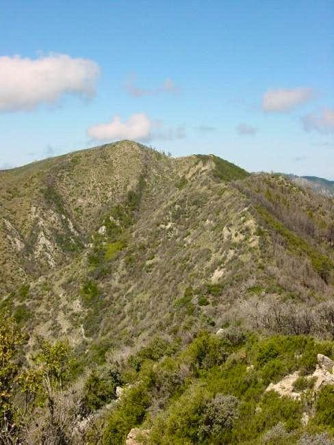 Ventana Cone from Peak 4445....
