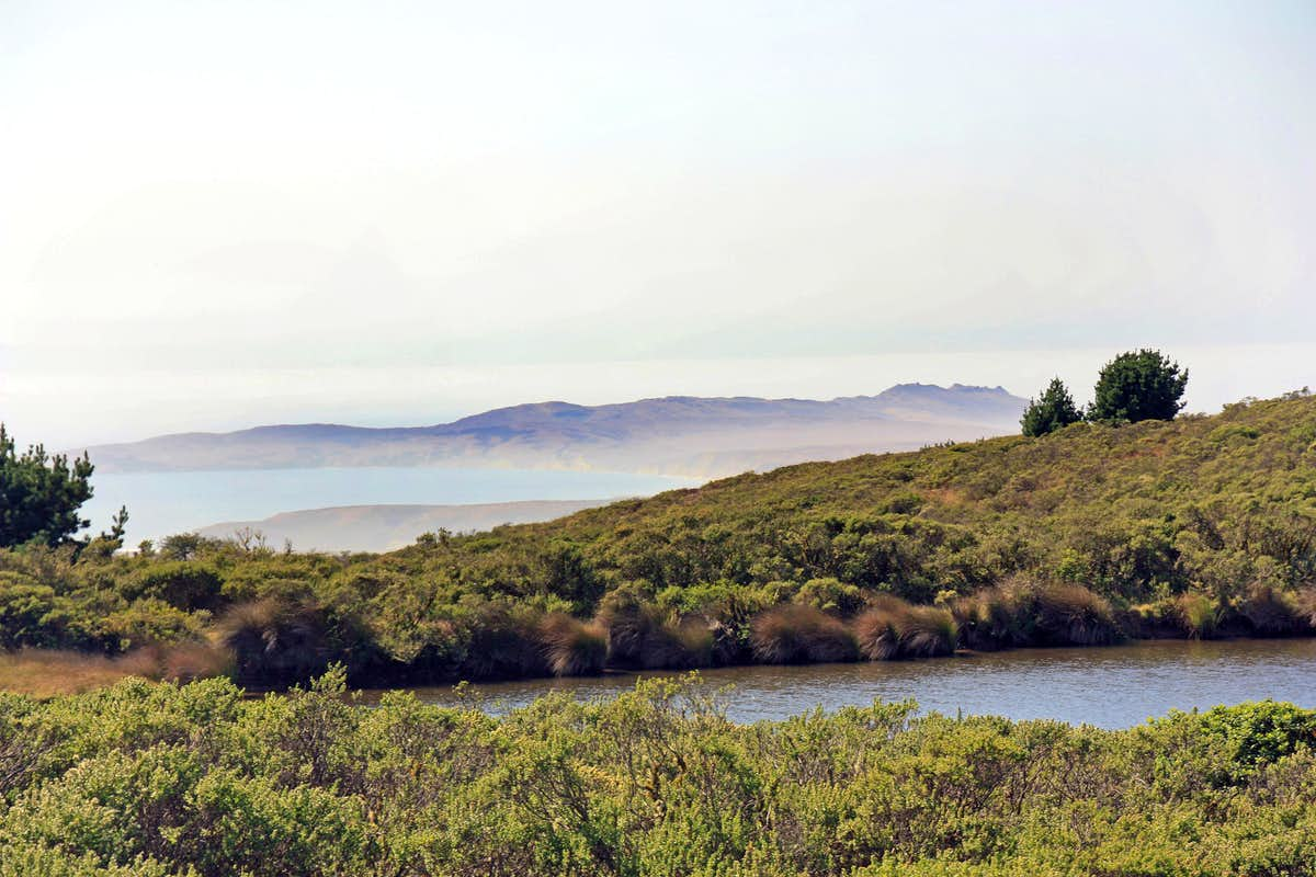 Point Reyes from Mt. Vision area