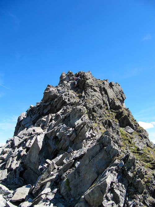Climbing Polleskogel