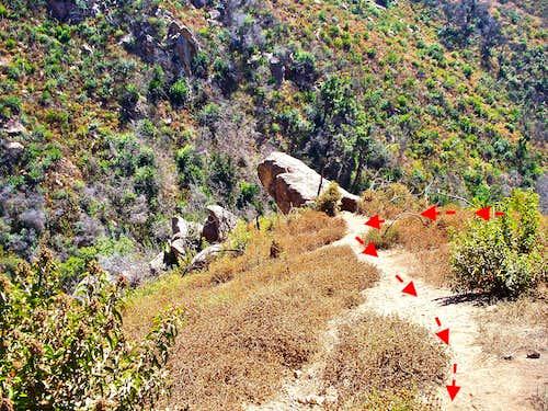 Left at Observation Rock
