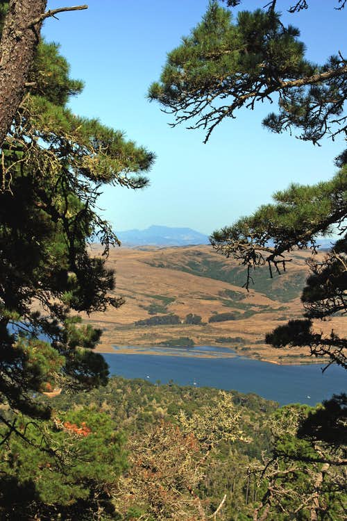 Across Tomales Bay