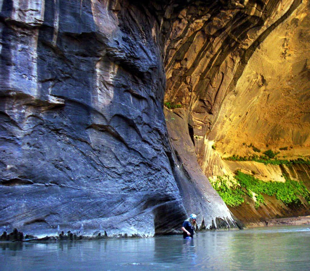 The Beautiful Zion Narrows