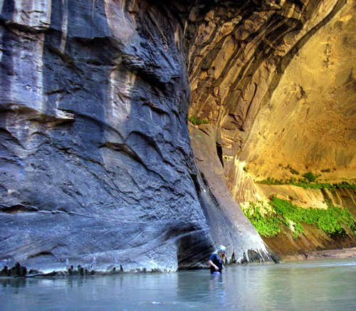 The Beautiful Zion Narrows