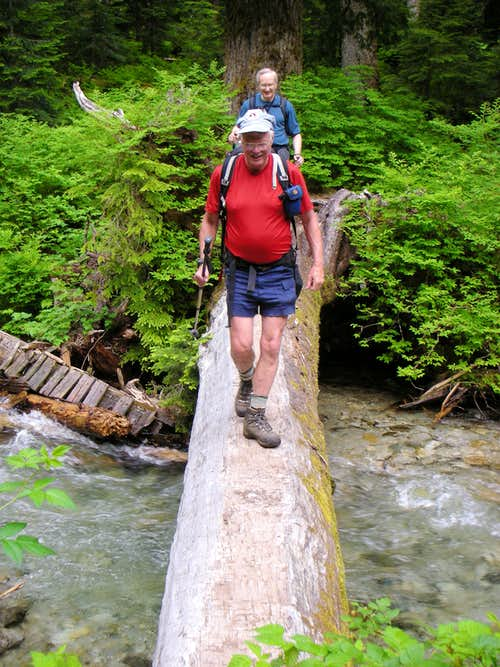 Log Crossing over Surprise Creek