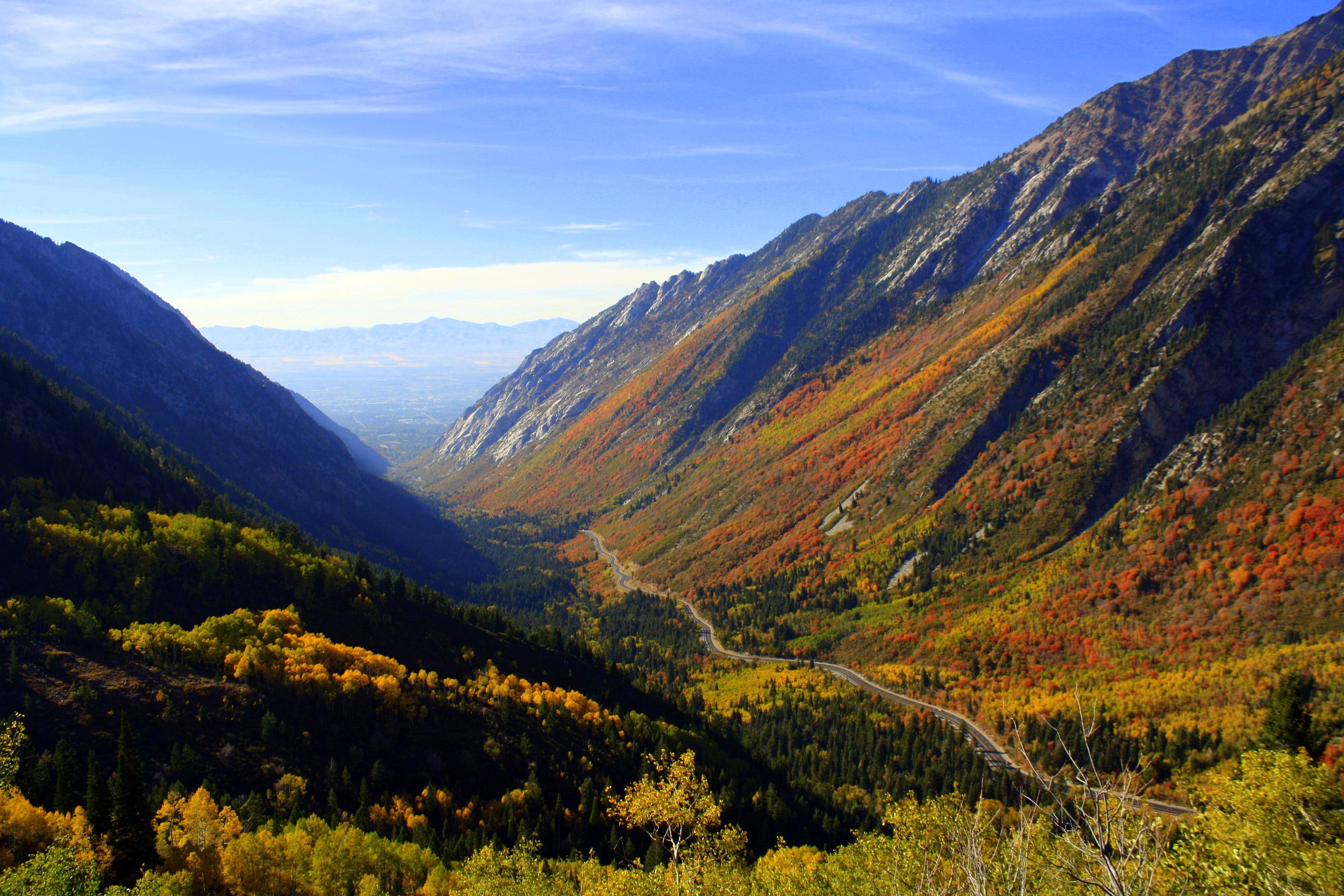 Wasatch Fall Colors 2010