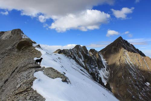 Coming down from Cirque Mountain
