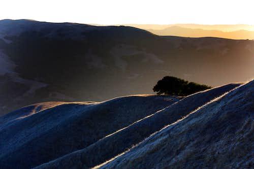 Last light on the Marin Hills