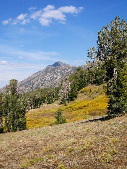 Highland Peak ~ 10,935 Ft.