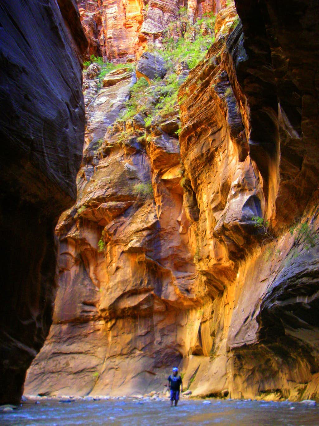 Bright Colors in the Zion Narrows
