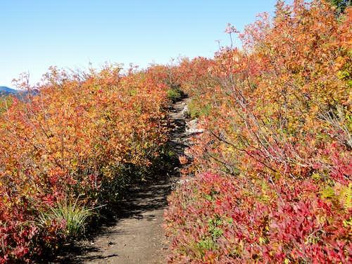 Fall on Granite Mountain